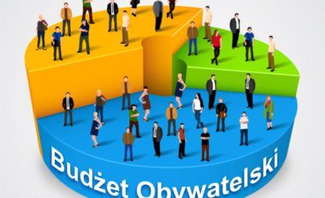 Głosuj na swój projekt w ramach Radzyńskiego Budżetu Obywatelskiego 2020