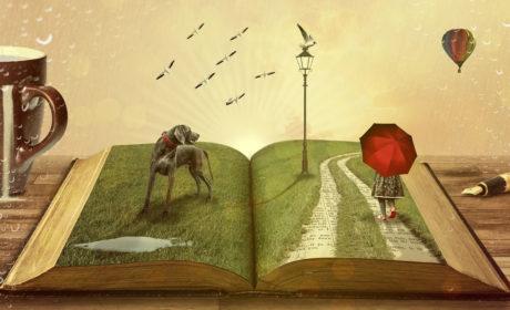 Apel do czytelnika