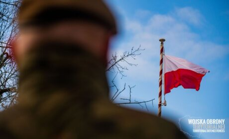 Przysięga terytorialsów i piknik historyczno-wojskowy