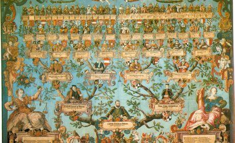 Probant na tablicy descendentów, czyli poradnik genealoga amatora