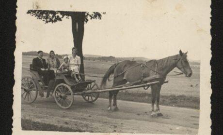 Rodzina Hapków w Lubniewicach – lata 50-te XX w.