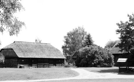 Janowiec (XVIII)