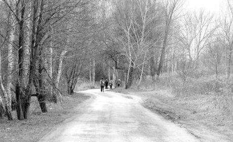 Joy Walk in the Silence (XVII)
