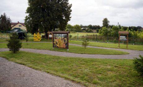 Zobacz Ogród Edukacyjny przy nadleśnictwie